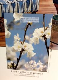Colorful Florals & Retro INK7283 Springblossom