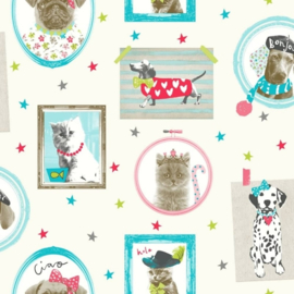 Imagine fun honden, poesen behang met glitters 668400