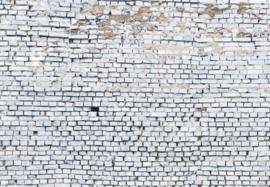White brick 8-881 Komar