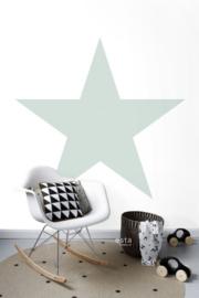 PhotowallXL star 158841 mint groene ster