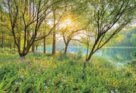 Spring Lake 8-524 Komar de lente