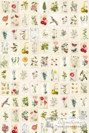 Eijffinger Pip Studio III wallpower 341086 Botanical Paper