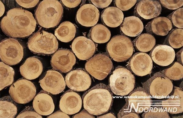 Wood Logs 3750011 Farm Life