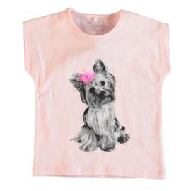 T-shirt: Nitefalulas