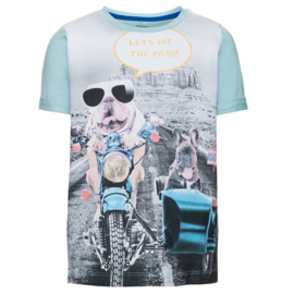 T-shirt: Niterling aqua