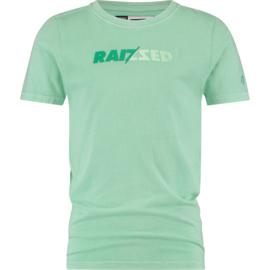 Raizzed t-shirt Humberto Pastel leaf