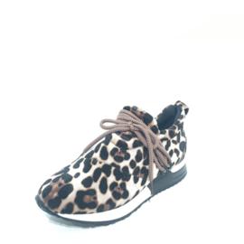WH sneaker leopart