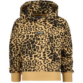 Raizzed hoodie Nova Multicolor Brown