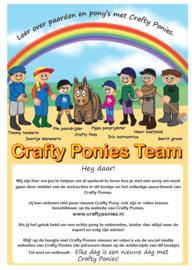 crafty pony bruin
