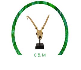 Gazelle Skull Goud