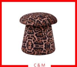 Mushroom Luipaard