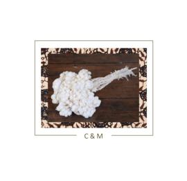Helichrysum Immortelle wit - 30 cm