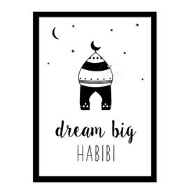Poster | Dream big  habibi