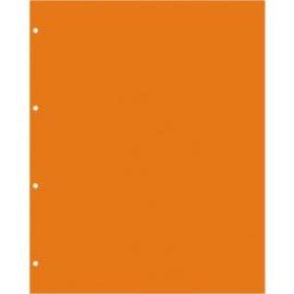 Schutblad Din NMB Oranje