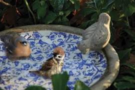 Keramiek vogelbad