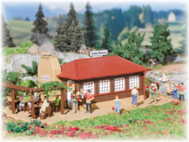 H0 | Vollmer 43615 - Smoked-trout shed