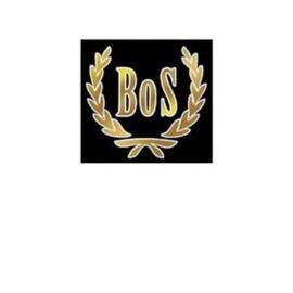 BoS-Models - H0