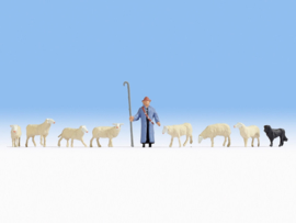 N | NOCH 36748 - Shepherd with sheep