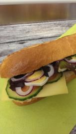 Vegetarische luxe broodjes
