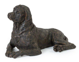 asbeeld/urn Rottweiler | 48 cm