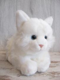 pluchen kat wit