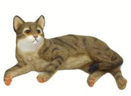 kattenbeeldje bruin tabby liggend