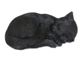 beeld/asbeeld/urn Kat slapend zwart