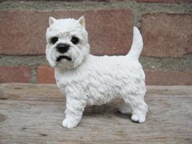 beeldje West Highland White Terriër staand
