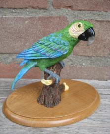 beeldje papegaai Ara groen-blauw
