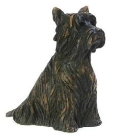 asbeeld/urn Yorkshire Terriër | 29 cm