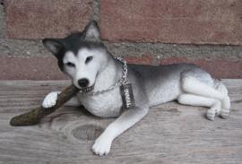 beeldje Husky liggend met stok