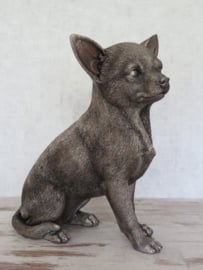 asbeeld/urn Chihuahua 23 cm