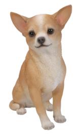 beeld/asbeeld/urn Chihuahua tan-wit |23 cm