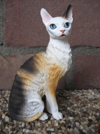 beeldje Cornish Rex lapjespoes