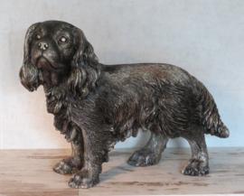 asbeeld/urn Cavalier King Charles spaniel 41 cm