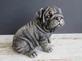 asbeeldje/urn Engelse Bulldog puppy