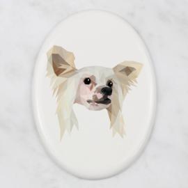 Ovalen tegeltje Chinese naakthond
