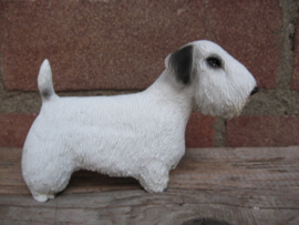 beeldje Sealyham Terrier