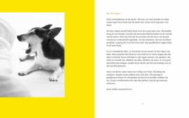 boekje Koen & Katie, afscheid van je liefste dier