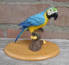 beeldje papegaai Ara blauw-geel