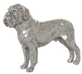 miniatuur Bordeaux Dog