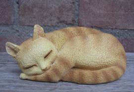 kattenbeeldje 'pleasant dreams' rood tabby