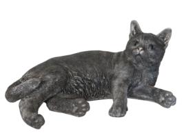 asbeeld/kattenurn Kat liggend