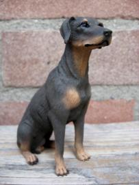 beeldje Dobermann zittend bruin