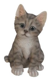 beeldje/asbeeldje/urn Kat zittend grijs