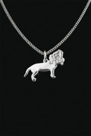 ashanger Hond