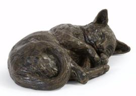 asbeeld/kattenurn Rustende kat