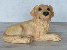 vintage beeld Labrador blond | 22,5 cm