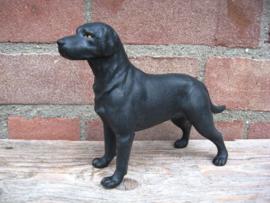 beeldje Labrador zwart vintage