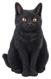 beeld/asbeeld/urn Kat zittend zwart | 29 cm